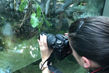 Fotografierende Kursteilnehmerin